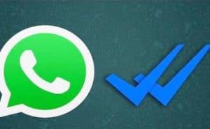 come togliere spunte blu whatsapp